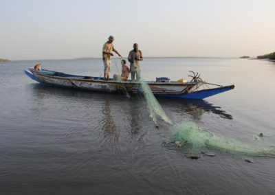 Pêche au filet Sine Saloum Senegal (2)-Niombato