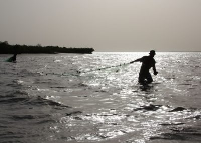 Pêche au filet Sine Saloum Senegal (3)-Niombato