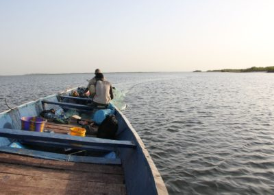 Pêche au filet Sine Saloum Senegal (5)-Niombato
