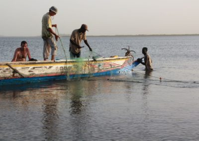 Pêche au filet Sine Saloum Senegal (6)-Niombato